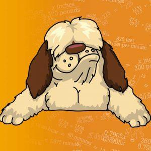 Shaggy Dog Math logo with equation background
