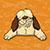 Shaggy Dog Math logo dog with orange equation background